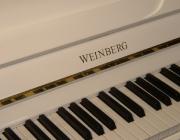 Weinberg_WU20T_3